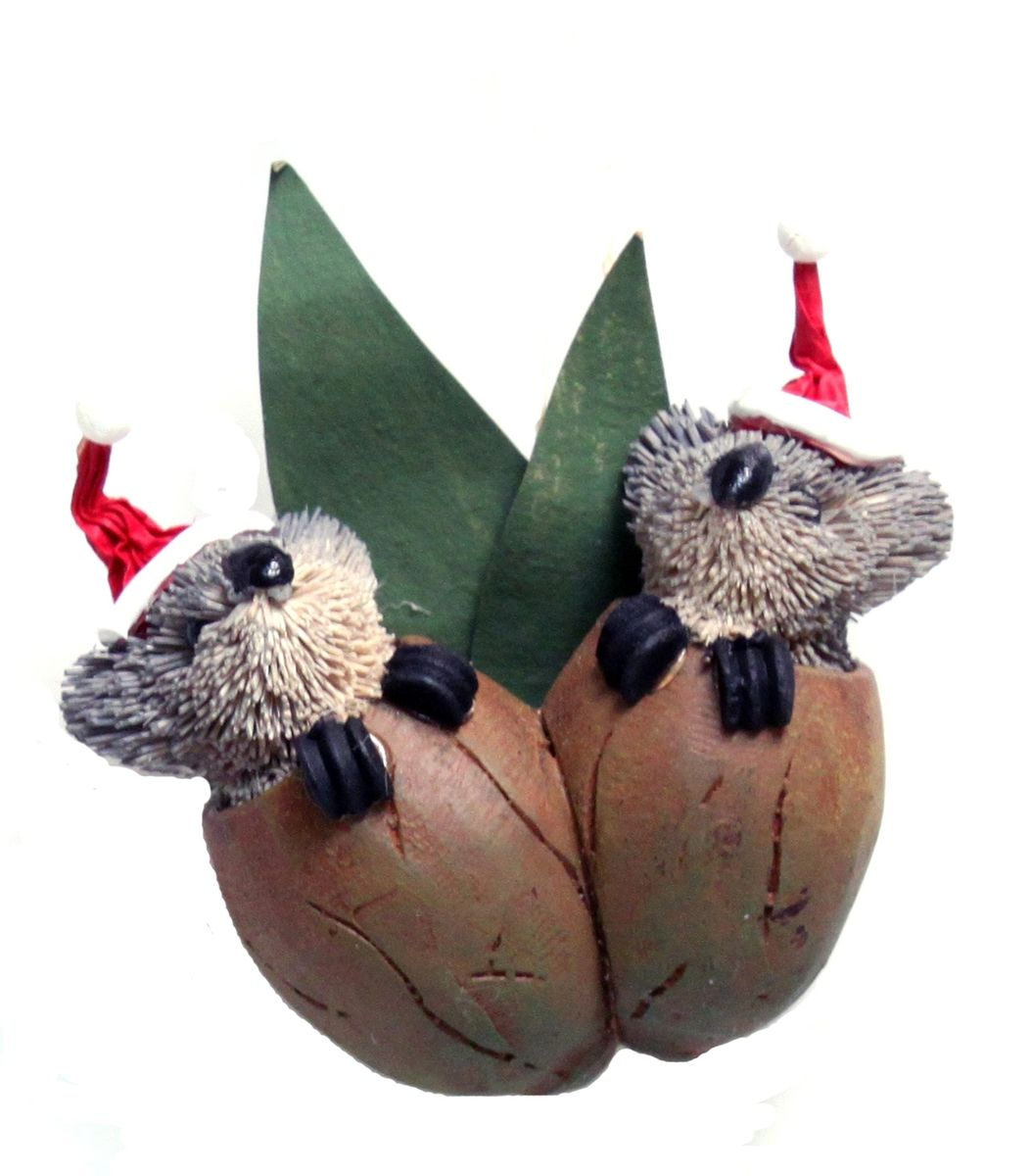 Twin koala gumnut babies christmas tree decoration the for Animal decoration