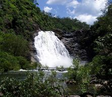 Bloomfield Falls - Tony's Tropical Tours