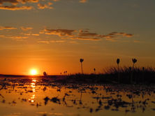 Davidsons Arnhemland Safaris Sunset