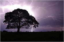 Lighting Storm - Natures Image Photography