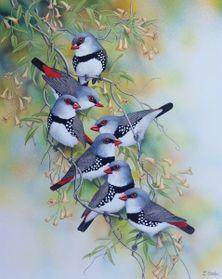Lyn Cooke - Wildlife Artist - Diamond Firetails
