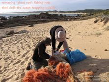 Wildlife Journey Fishing Net Removal