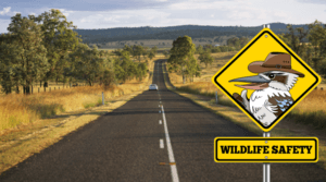 Wildlife Safety - Help For Wildlife