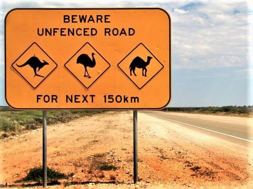 Beware of Wandering Animals on Unfenced Roads