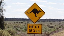 180 kms of Kangaroo Country - by Jacqueline Graf