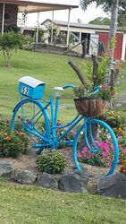 Beautiful bike in blue letterbox - what a gorgeous functional feature. - photo by Vivenne Tracy