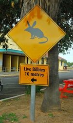 Bilby Sign - photo by Penny Smith