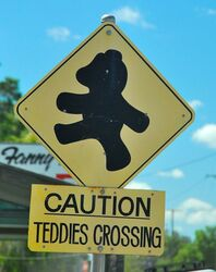 Caution Teddies Crossing in the outback of Queensland. Photo by Penny Smith