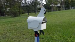 Cockatoo Mailbox - or did the cocky eat the mailbox? - Photo by Vivienne Tracy