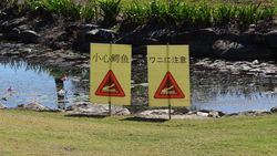 Crocodile Awareness at Port Douglas Golf Course - by Jacqueline Graf