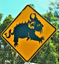 Drop Bears with serious attitude warning sign - photo by Penny Smith