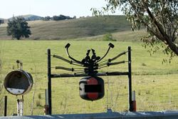 Giant Red-back spider letterbox - fancy putting your hand in here to get your mail out? - Victoria