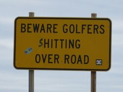Golfers...........errr...........over the road at Peterborough Victoria. Well that's cheeky. Photo by Penny Smith