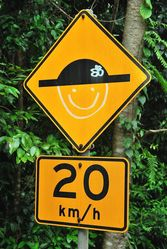 A speed bump who loves their job of slowing vehicles for Cassowaries - photo by Penny Smith at Cape Tribulation QLD