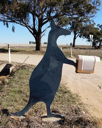 Kangaroo letterbox greets the postie on an country road in NSW