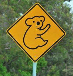 Koalas Road Sign - photo by Penny Smith