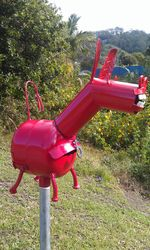 No way the postie could miss this pink mail mule letterbox on his rounds - photo by Vivienne Tracy