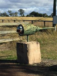 Dragon Fly mailbox - Warrill View QLD - by Dave Hambly