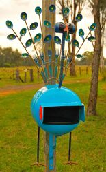 Peacock Letterbox - photo by Penny Smith