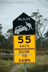 It's not only the wildlife that gets hurt - Tasmania