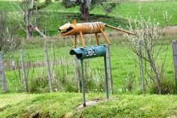 The Tasmanian Tiger has been spotted - or has it? - Tasmania