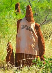 Termite Mound Man who tried to be good. Mount Isa QLD. Photo by Penny Smith