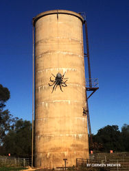 The Big Spider sits precariously perched on the town of Urana's Water Tower. Photo by Carmen Brewer