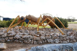 The Big Ant - South Australia