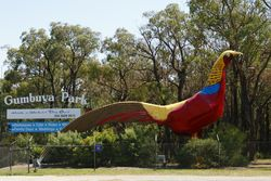 The Big Pheasant - Gumbuya Park - Victoria