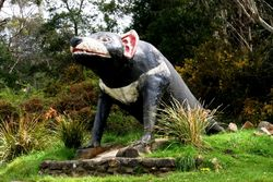 The Big Tasmanian Devil - Tasmania