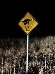 Watch Out for Turtles - Winton NSW - Ros Plunkett