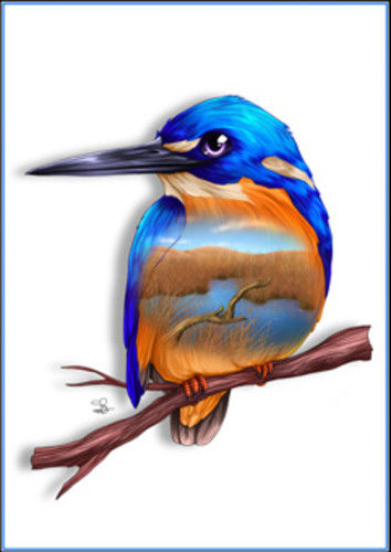 Azure Kingfisher Greeting Card - The Land Down Under