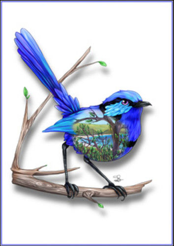 Blue Wren Greeting Card - The Land Down Under