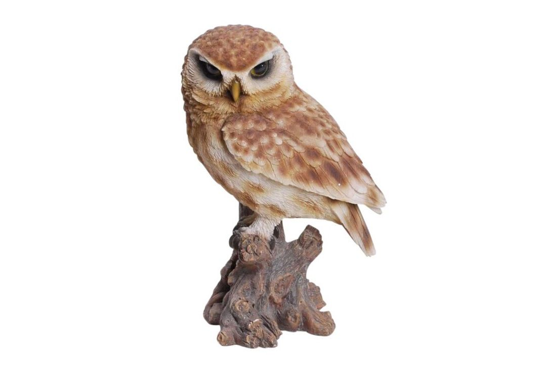 Boobook Owl Indoor/Outdoor Statue