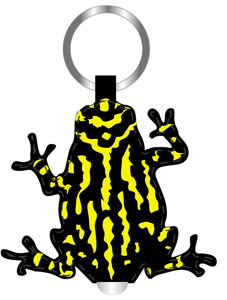 Corroboree Frog Torch and Keyring