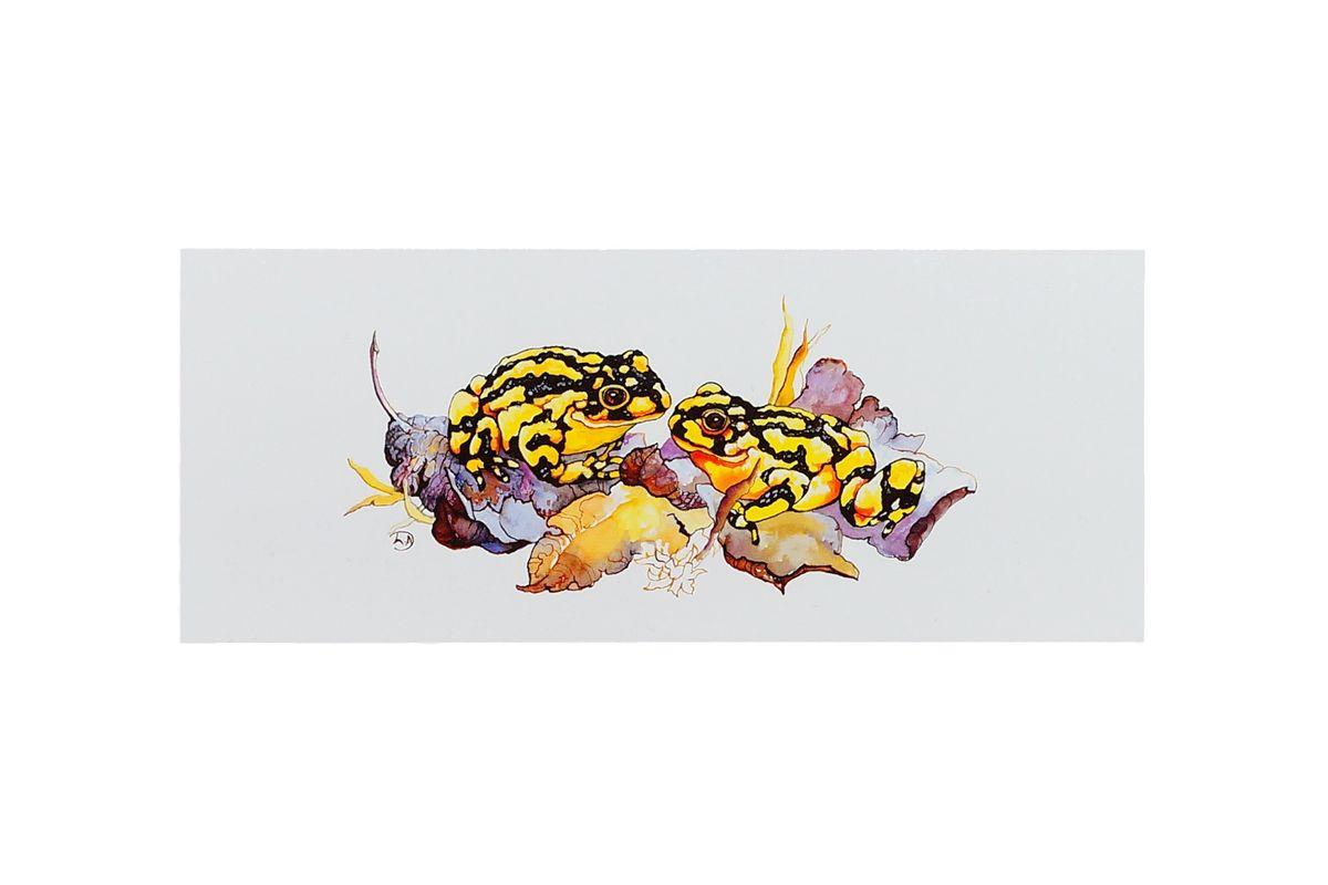 Corroborree Frog Book Mark