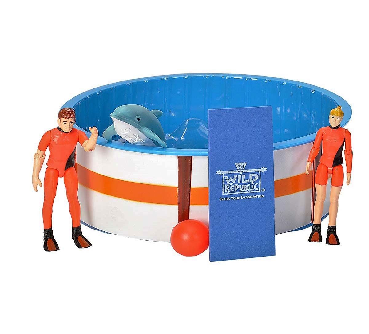 Dolphin Recovery Pool Playset