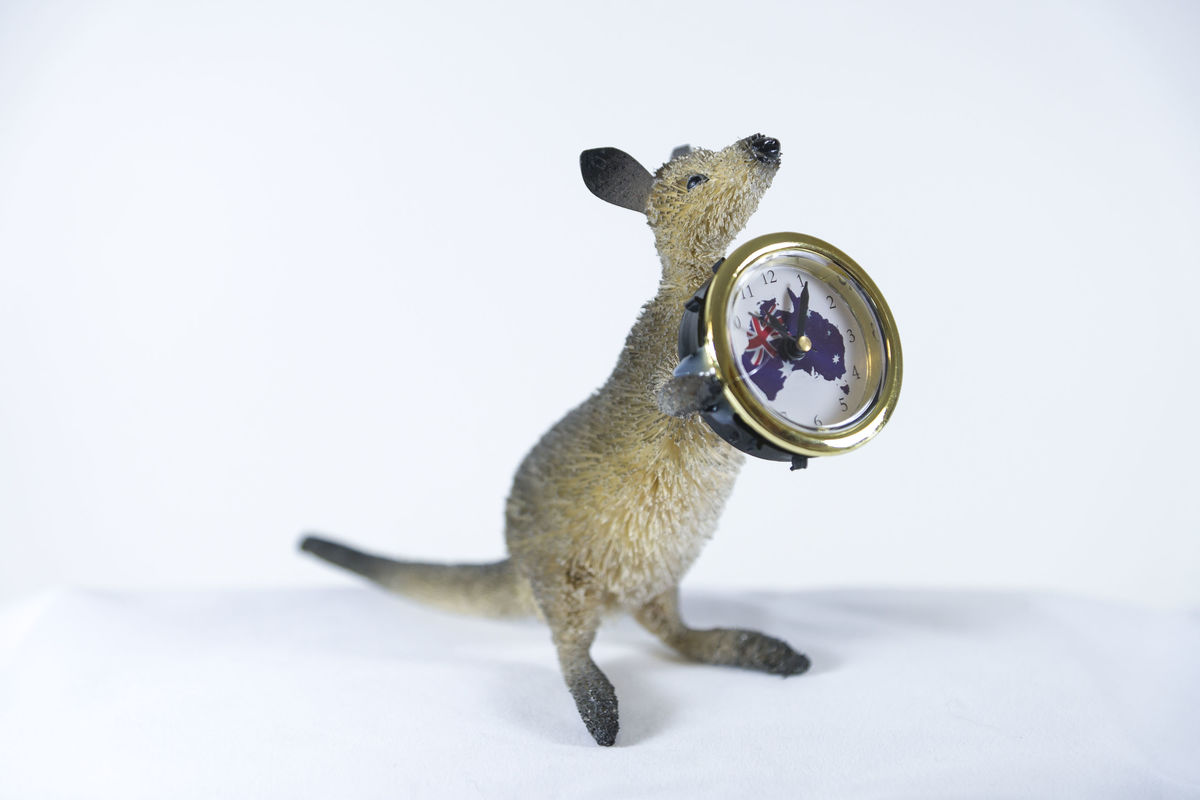 Beautifully hand crafted, hand painted and hand made Aussie Kangaroo Clock - batteries inc