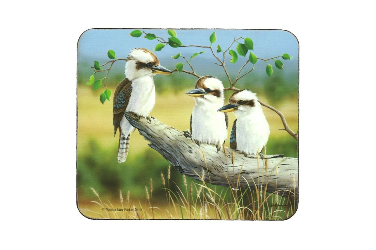Kookaburra Country Scene Coasters - Set of 6
