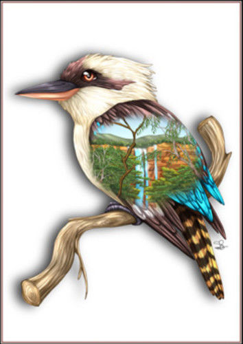 Kookaburra Greeting Card - The Land Down Under
