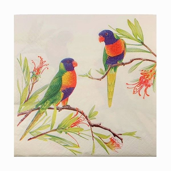 Napkins  Rainbow Lorikeets