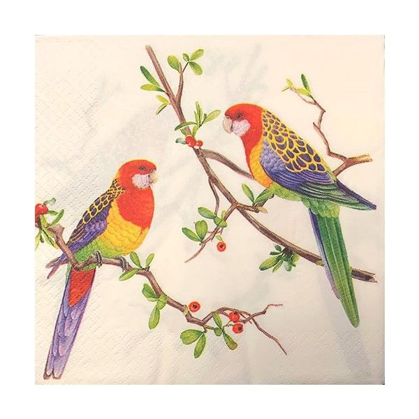 Napkins / Serviettes - Eastern Rosellas - 20 paper napkins per pack. 33cm x 33cm