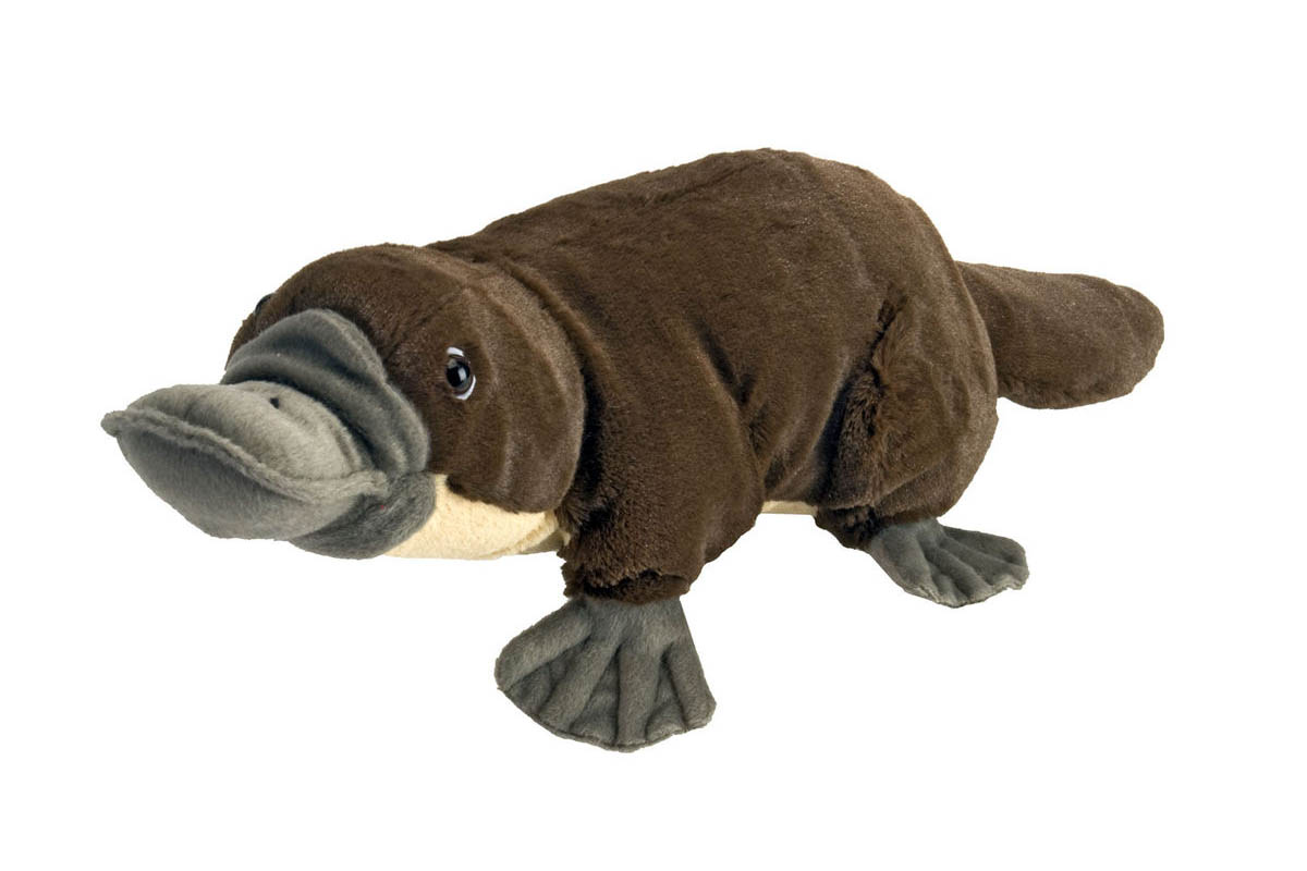 12 inch Plush Platypus Toy