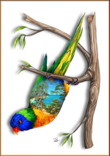 Rainbow Lorikeet Greeting Card - The Land Down Under