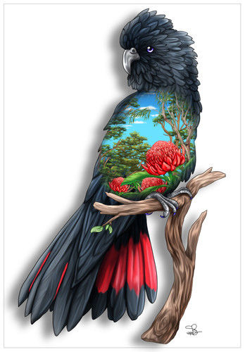 Red Tailed Black Cockatoo Greeting Card - The Land Down Under