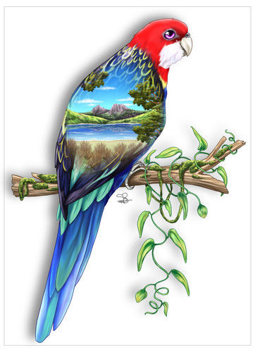 Rosella Greeting Card - The Land Down Under