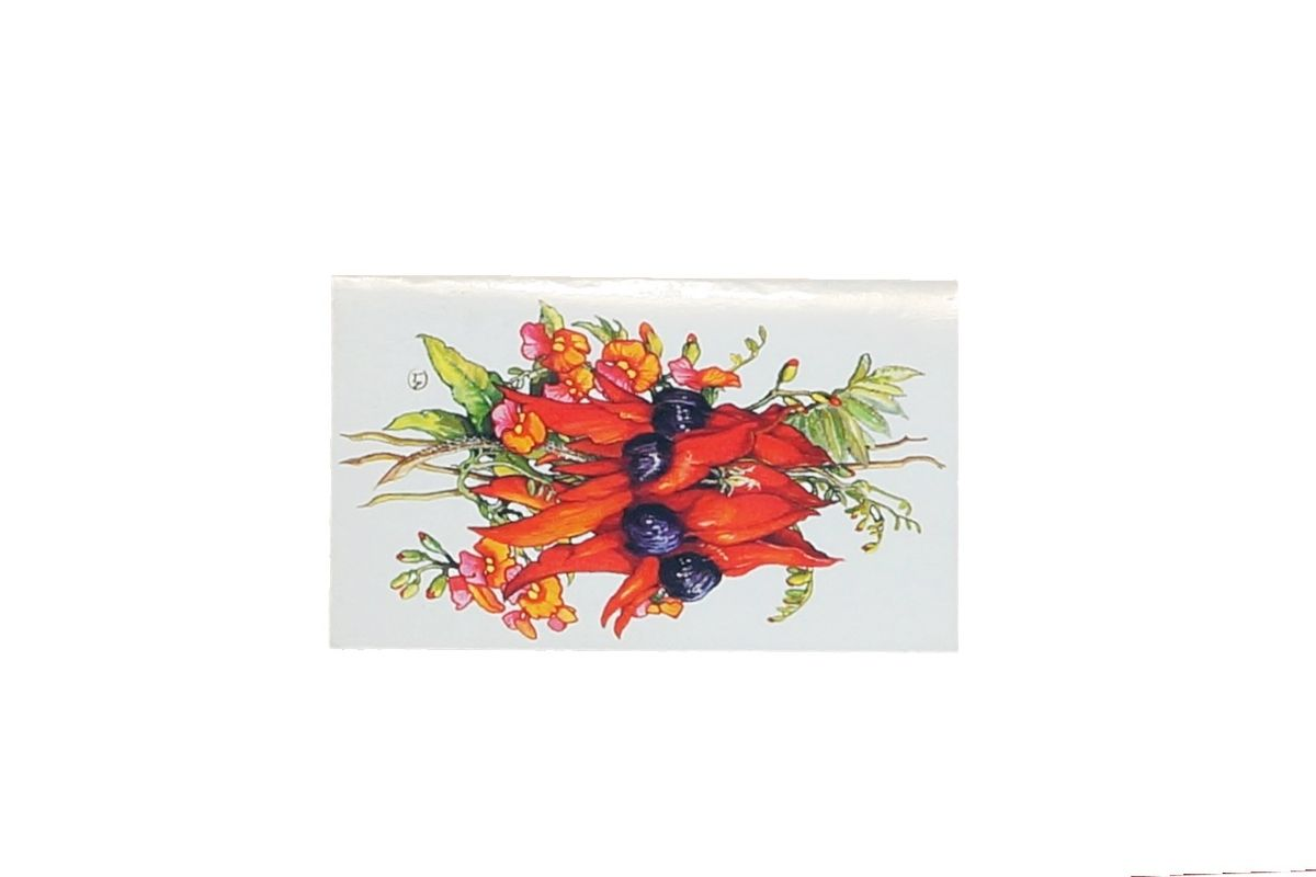 Sturts Desert Pea & Flame Pea Gift Wrap Pack Card