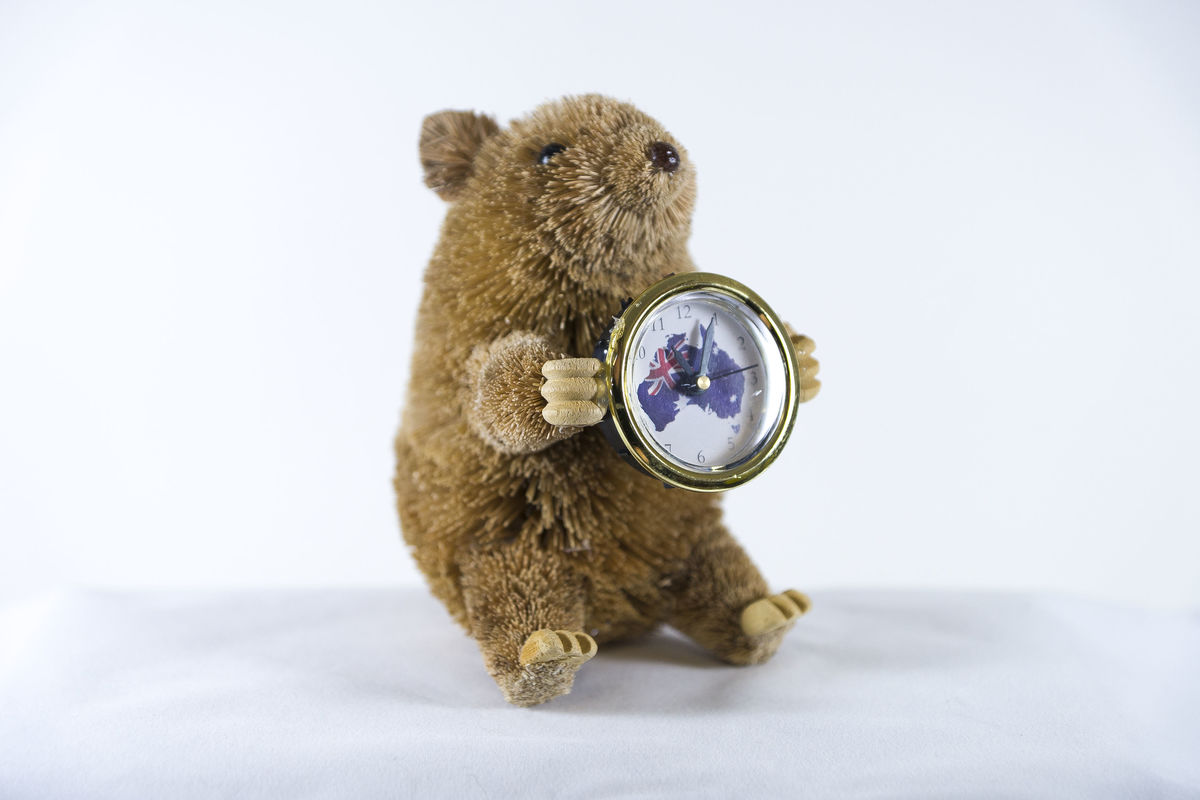 Beautifully hand crafted, hand painted and hand made Aussie Wombat Clock, batteries includ