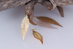 Eucalyptus Real Leaf Earrings - Gold