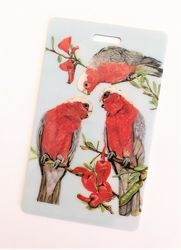 Luggage Tags - Galahs